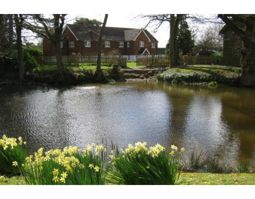 Pond treatment and additives