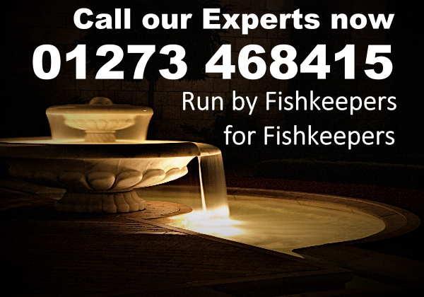Fishkeepers for fishkeepers