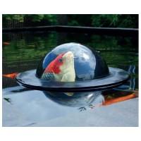 Koi Viewing sphere Medium