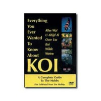 Everything ever wanted to know about Koi